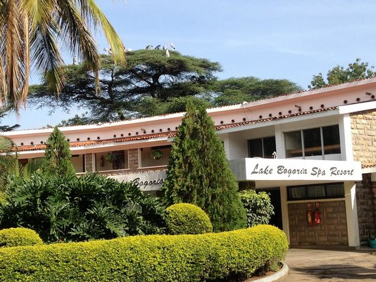 Lake Bogoria Spa Resort : reception