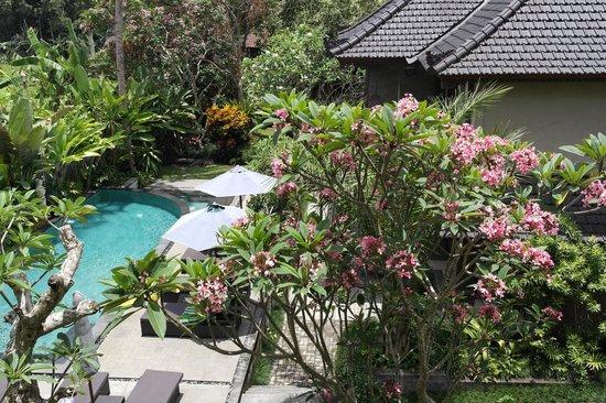 De Munut Balinese Resort: View from Balcony