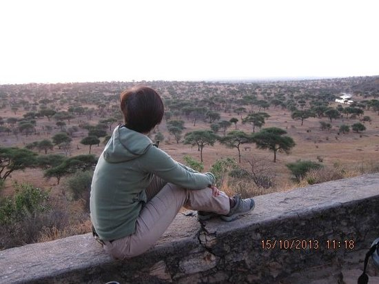 Tarangire Safari Lodge: There is a open area where you can sit and relax and watch the sunrise. Nice area.