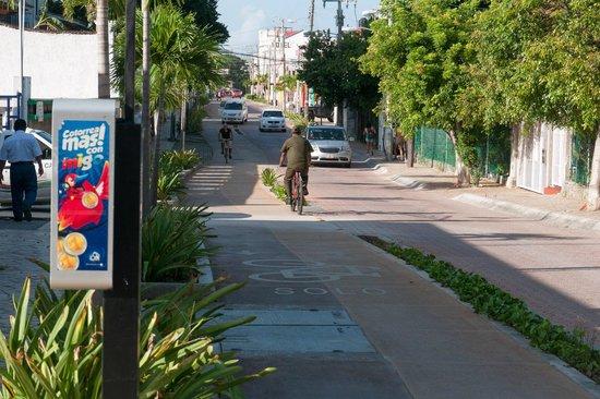 Piste Cyclable sur Paseo Xaman-Ha : Велосипедная дорожка вдоль 10-й авеню в центре города