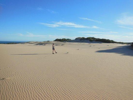 Dunes de Dovela eco-lodge: le petit désert
