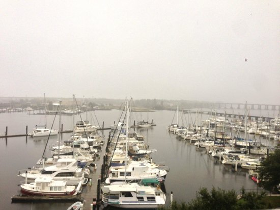 DoubleTree by Hilton Hotel New Bern Riverfront: View from room on a foggy Nov Morning.