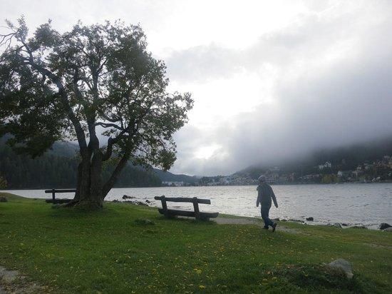 Lake of Staz (Lej da Staz) : peaceful corner