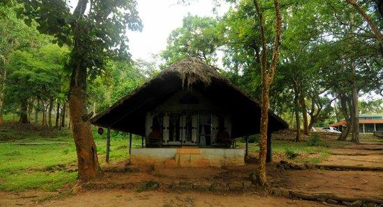 K Gudi Wilderness Camp: Tented Cottage # 1 - Black Drongo