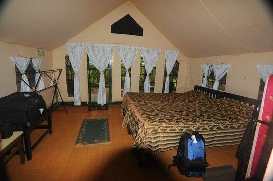 K Gudi Wilderness Camp: The Tented Room