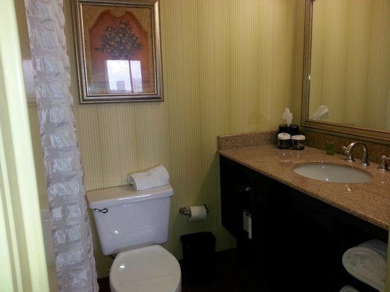 Embassy Suites by Hilton Fort Lauderdale 17th Street: Bathroom
