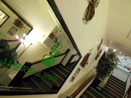 The Cambridge Mostyn Restaurant: Victorian mirrored entrance