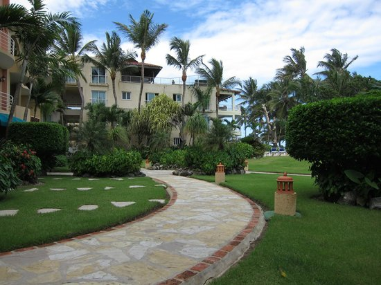 Agualina Kite Resort: Территория. Сзади соседний отель, живущим там не так повезло-вид на океан есть всего в паре номе