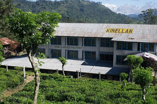 ‪Kinellan Tea Factory‬
