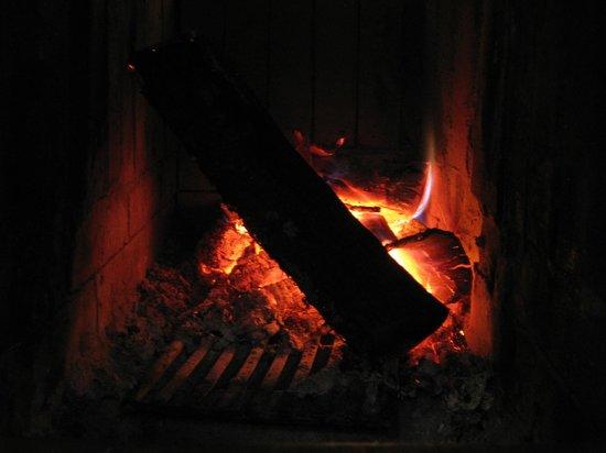 artisan wood fired P. ZZA: Wood Fired