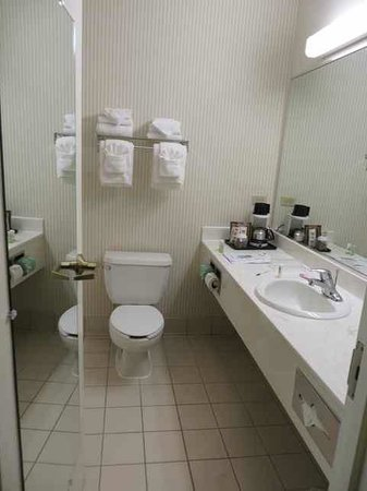 Country Inn & Suites By Carlson, Chicago O'Hare South: bathroom