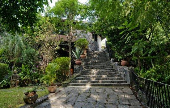 Casa Piedra Bed & Breakfast: Entrada a la propiedad