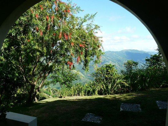 Lime Tree Farm: Amazing view from our front door: hummingbirds and mountains