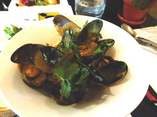 The Fixx Pasta Bar and Cafe: Heavenly mussels in curry sauce- best I have ever had