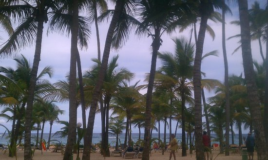 ClubHotel Riu Bambu: Beachfront