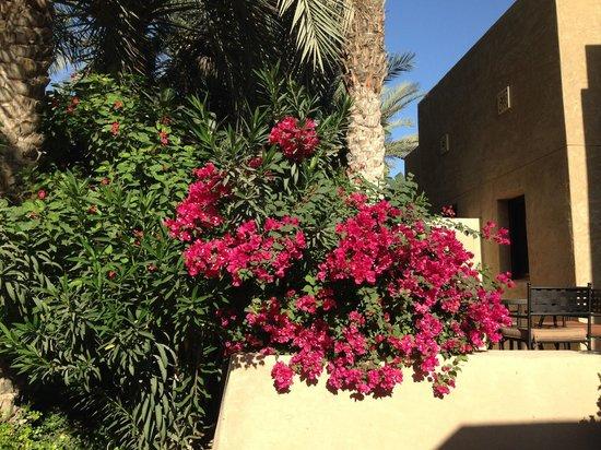 Bab Al Shams Desert Resort & Spa: Gardens