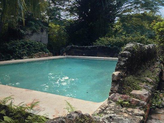 Hacienda San Jose, a Luxury Collection Hotel: Pool