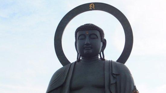 Takaoka Daibutsu Buddha : 迫力