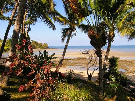 Vanila Hotel & Spa: Le jardin et la plage.