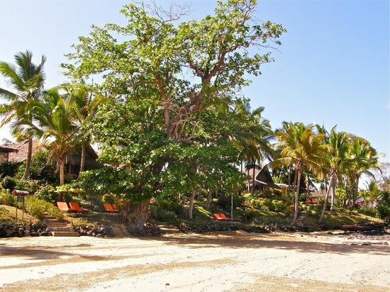 Vanila Hotel & Spa: Vue depuis la plage à marée basse.