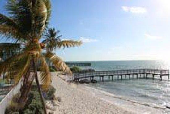 Glunz Ocean Beach Hotel & Resort: Från balkongen