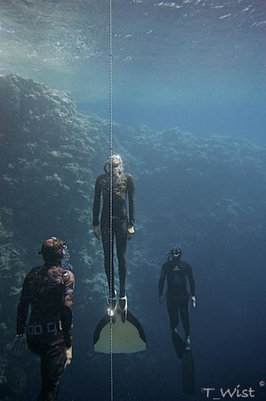 Freedive Dahab : At Blue Hole