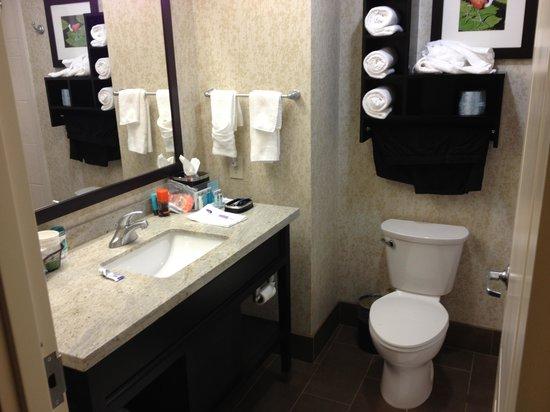 Hampton Inn & Suites Houston I-10/Central: bathroom