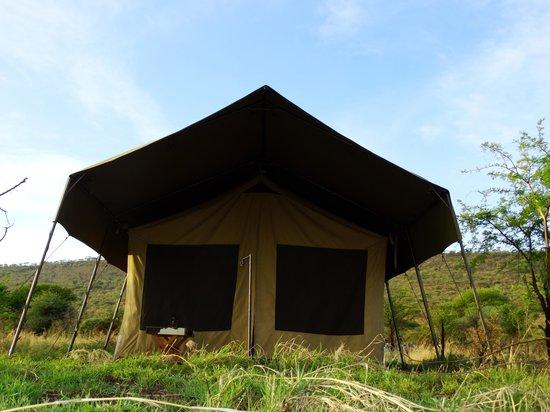 Serengeto Osupuko Tented Camp: Tent Room