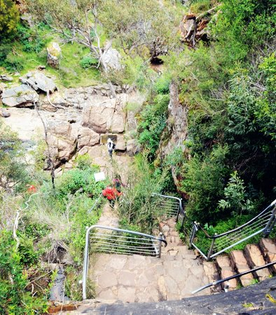McKenzies Falls: Mackenzie Fall's base  1.16km return w lots stairs case