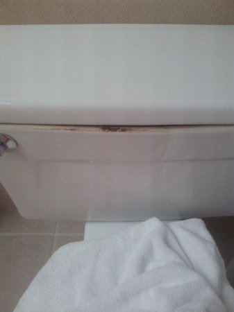 Hilton Oakland Airport: Toilet tank lip with mysterious brown residue