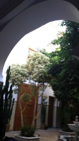 Riad Asrari: Cour intérieure du Riad depuis espace détente