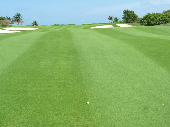 Playa Mujeres Golf Club: Hole 16, Par 4