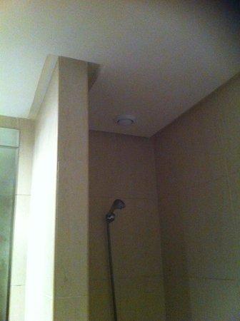 Hotel Eden Andalou Aquapark et Spa : Shower head that doesn't work in 5 stars resort!