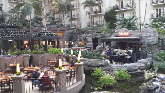 The 10 Best Restaurants Near Gaylord Opryland Resort Gardens