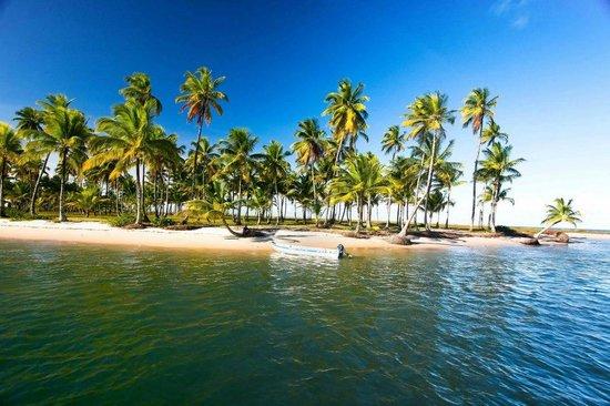 Eco-Pousada Casa Bobo: Moreré Beach