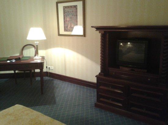 City Palace Hotel : Old-fashined TV