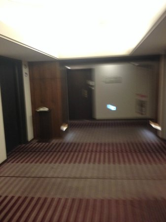 Hotel Metropolitan Tokyo Ikebukuro: parties communes