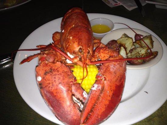 Caribbean Jerks: Thursday is Lobster Night!  1.5# Lobster Platter fo $20