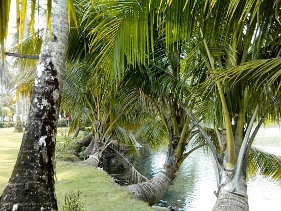 Khlong Yai Kee Waterfalls : Romario177