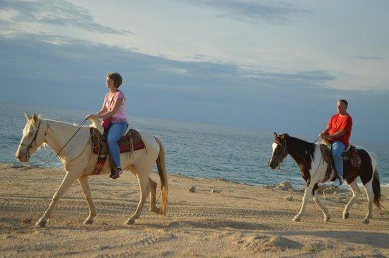 Cactus ATV Tours: Horseback riding in Cabo San Lucas