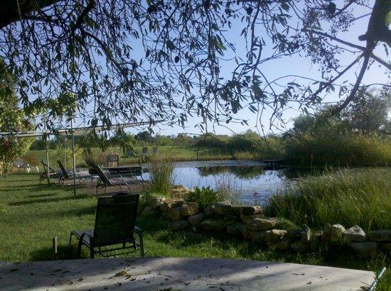 QuintaMar: Garten mit Pool