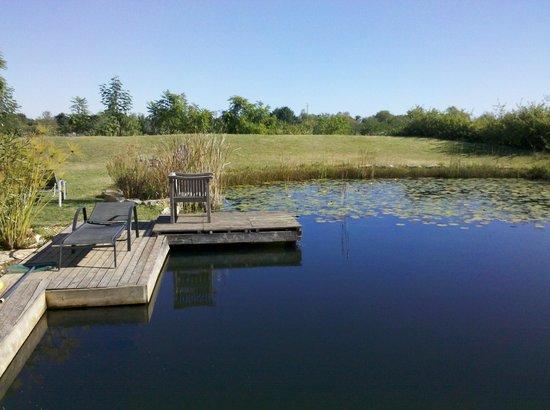 QuintaMar: Garten + Pool