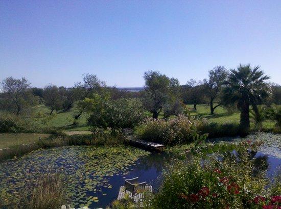 QuintaMar: Garten