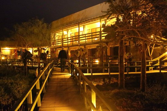 Finch Bay Eco Hotel : Night view