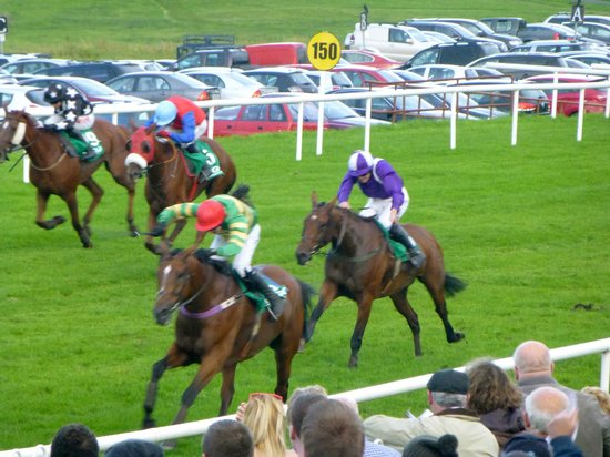 An Cruiscin Lan : Sligo horse race (on grass, hedge jumps