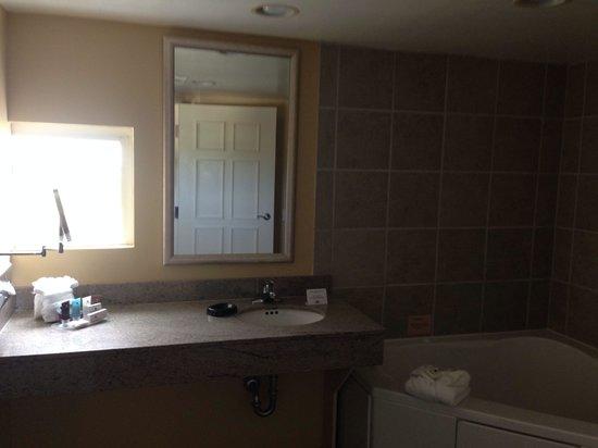 Crowne Plaza Orlando - Universal Blvd : Bathroom