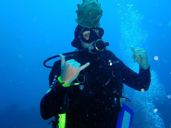 Koloa Landing Scuba - Review of Sea Monkey SCUBA Tours LLC