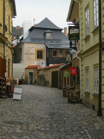 Hotel U Hrncire: вход