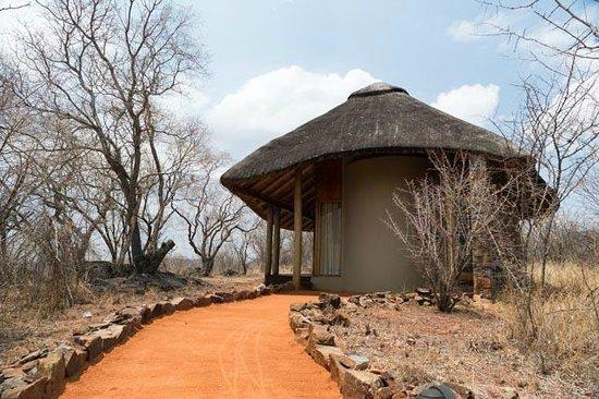Buffalo Ridge Lodge: Accommodation hut