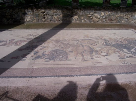 Casa del Fauno: Replica of Battle Mosaic